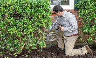 home-exterior-inspection
