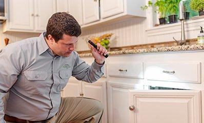 home-interior-pest-inspection