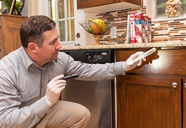 thorough pest inspection in a home