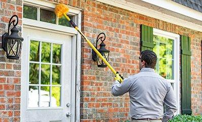 pest removal in a residence