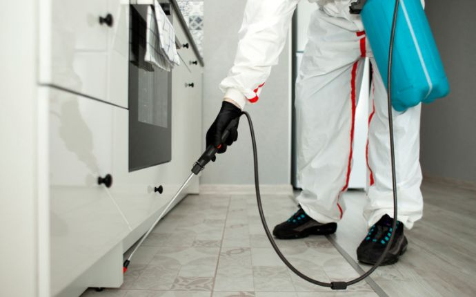 A pest control professional applying insecticide under an oven.